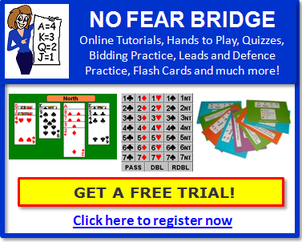 Learn with No Fear Bridge